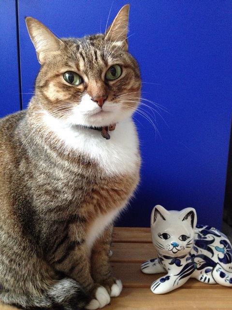 もじゃと陶器猫