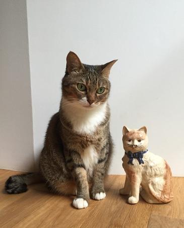 もじゃと陶器猫2